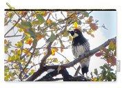 Acorn Woodpecker In Tree  In Park Sierra-ca Carry-all Pouch