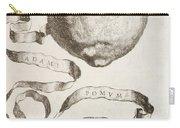 Adam's Apple Carry-all Pouch by Cornelis Bloemaert