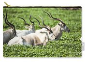 Addax Nasomaculatus Carry-all Pouch