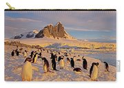 Adelie Penguin, Pygoscelis Adeliae Carry-all Pouch