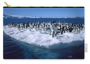 Adelie Penguins On Icefloe Antarctica Carry-all Pouch by Colin Monteath