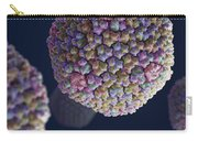 Adenovirus Carry-all Pouch