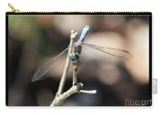 Adorable Dragonfly With Border Carry-all Pouch