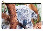 Adorable Koala Bear Taking A Nap Sleeping On A Tree Carry-all Pouch