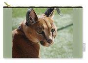 African Caracal Lynx  Carry-all Pouch