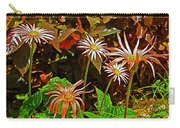 African Daisies In Aswan Botanical Garden On Plantation Island In Aswan-egypt Carry-all Pouch