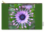 African Daisy - Square Format Carry-all Pouch