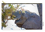 African Elephant Browsing In Kruger National Park-south Africa Carry-all Pouch