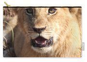 African Lion Cub Resting Carry-all Pouch