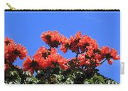 African Tulip Tree Carry-all Pouch