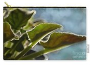 African Violet Leaves With Bokeh   Carry-all Pouch
