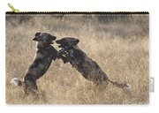 African Wild Dogs Playing Lycaon Pictus Carry-all Pouch