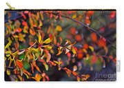 After The Autumn Rain 1 Carry-all Pouch