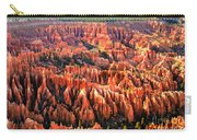 Afternoon Hoodoos Carry-all Pouch by Robert Bales