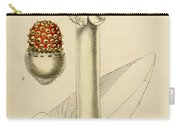 Agaricus Mushroom By Sowerby Carry-all Pouch by Philip Ralley