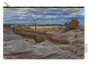 Agate Bridge In Petrified Forest National Park-arizona Carry-all Pouch