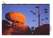 Agave Stalk And Boulder Carry-all Pouch