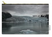 Aialik Glacier Carry-all Pouch