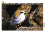 Alabama Tern Carry-all Pouch
