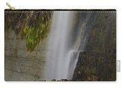 Alabama Waterfall Carry-all Pouch