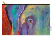 Aladdin Carry-all Pouch by Pat Saunders-White