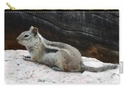 Albert Squirrel Carry-all Pouch
