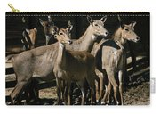 Alert Antelopes Carry-all Pouch