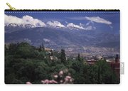 Alhambra View Carry-all Pouch