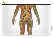 All Body Systems In Male Anatomy Carry-all Pouch