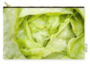All The Year Round Carry-all Pouch by Anne Gilbert