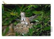 Allens Hummingbird Chicks Carry-all Pouch