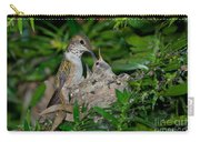 Allens Hummingbird Feeds Young Carry-all Pouch