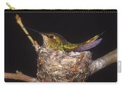 Allens Hummingbird Female Nesting Carry-all Pouch