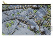 Alligator Babies IIi Carry-all Pouch