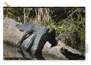 Alligator Sunbathing Carry-all Pouch