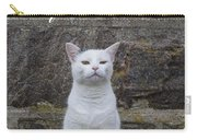 Aloof Cat Carry-all Pouch