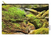 Alpha Falls Cascades Carry-all Pouch