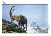 Alpine Ibex 4 Carry-all Pouch