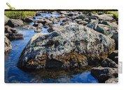 Alpine Stream Beartooth Mounain Range Carry-all Pouch by Edward Fielding