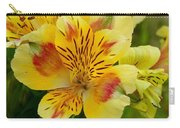 Alstroemerias Flower 1 Carry-all Pouch