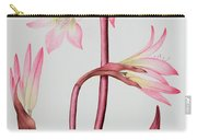 Amaryllis Belladonna Carry-all Pouch