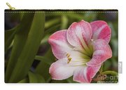 Amaryllis Bloom Carry-all Pouch