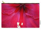 Amaryllis Close-up Carry-all Pouch