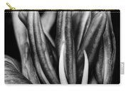 Amaryllis In Bw Carry-all Pouch