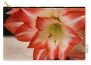Amaryllis In Spring Carry-all Pouch
