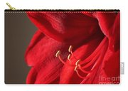 Amaryllis6686 Carry-all Pouch