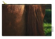 Amber Horse Tail Carry-all Pouch