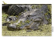 American Alligator Print Carry-all Pouch