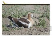 American Avocet On Eggs Carry-all Pouch