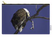 American Bald Eagle 1 Carry-all Pouch